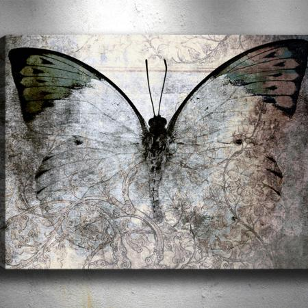 Картина Night Butterfly 40x60